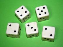 Cinq matrices. Photographie stock libre de droits