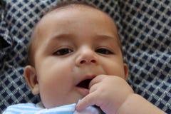 Cinq mois de bébé garçon jouant dans la poussette Photos stock