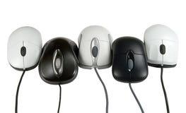 Cinq mouses images libres de droits
