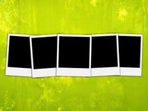 Cinq photos en blanc sur le fond vert Image libre de droits