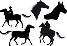 Cinq silhouettes des chevaux Photos libres de droits