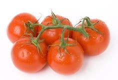 Cinq tomates Image libre de droits