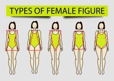 Cinq types de chiffres femelles, image illustration stock