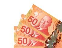 Cinquanta dollari canadesi Fotografia Stock Libera da Diritti