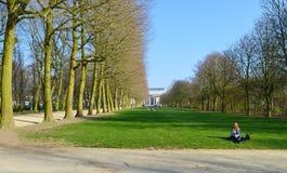 Cinquantenaire parkerar i Brussel Jubelpark, jubileum parkerar Royaltyfria Bilder