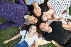 Cinque amici allegri che si trovano sul ritratto di punto di vista superiore dell'erba Immagini Stock