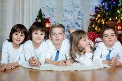 Cinque bambini, fratelli, sorella, fratelli germani ed amici svegli, havi Immagine Stock Libera da Diritti