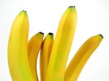 Cinque banane Fotografie Stock