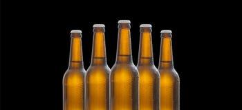 Cinque bottiglie di birra di vetro isolate su fondo nero Fotografia Stock