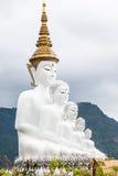 Cinque Buddha Immagini Stock Libere da Diritti