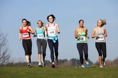 Cinque corridori femminili che si preparano per la corsa Immagini Stock Libere da Diritti