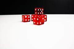 Cinque dadi rossi su priorità bassa in bianco e nero Immagine Stock Libera da Diritti