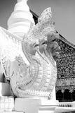 Cinque decorativi hanno diretto il drago bianco Immagine Stock Libera da Diritti