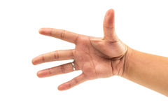 Cinque dito e mano contano il numero cinque su fondo bianco isolato Fotografia Stock