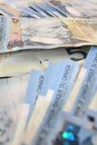 Cinque fatture del dollaro Immagini Stock Libere da Diritti