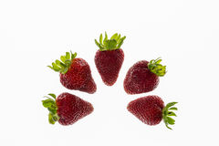 Cinque fragole sistemate nel semicerchio su fondo bianco Fotografia Stock