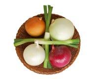 Cinque generi di cipolle Fotografia Stock
