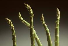 Cinque germogli dell'asparago contro una priorità bassa grigia Immagine Stock