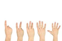 Cinque gesti di mano hanno isolato la priorità bassa Fotografia Stock