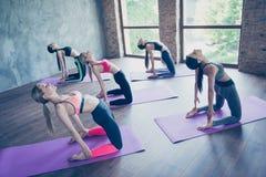 Cinque giovani signore esili di yoga stanno facendo l'allungamento dell'esercizio su Th Fotografie Stock Libere da Diritti