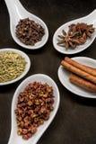 Cinque granelli di pepe di Szechuan del cerchio del cucchiaio della spezia Fotografie Stock Libere da Diritti
