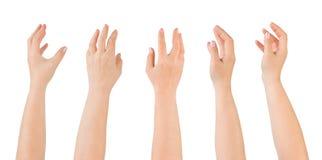 Cinque mani immagini stock