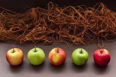 Cinque mele con erba marrone artificiale Immagine Stock