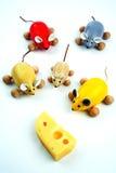 Cinque mouse con formaggio Fotografie Stock Libere da Diritti