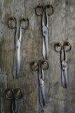 Cinque paia di vecchie forbici su un di legno Fotografie Stock Libere da Diritti
