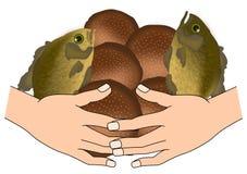 Cinque pani e due pesci illustrazione di stock