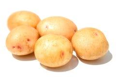 Cinque patate fotografie stock libere da diritti