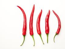 Cinque peperoncini rossi Fotografie Stock Libere da Diritti