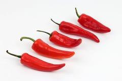 Cinque peperoni dolci rossi luminosi su un fondo bianco Immagine Stock