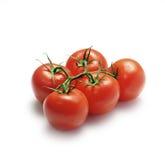Cinque pomodori Fotografie Stock Libere da Diritti