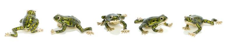 Cinque rane dorate del metallo Fotografia Stock