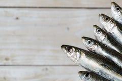 Cinque sardine Fotografie Stock
