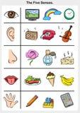 Cinque sensi - tocco, gusto, udienza, vista, odore illustrazione vettoriale