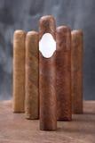 Cinque sigari Fotografia Stock