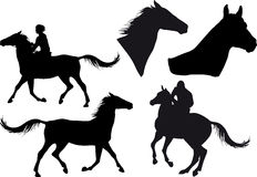 Cinque siluette dei cavalli Fotografie Stock Libere da Diritti