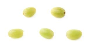 Cinque singole uva bianche isolate Immagini Stock Libere da Diritti
