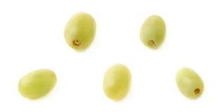 Cinque singole uva bianche isolate Immagine Stock Libera da Diritti
