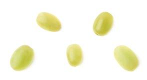 Cinque singole uva bianche isolate Fotografia Stock Libera da Diritti