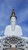 Cinque statue bianche di Buddha che si siedono allineamento buono davanti a cielo blu e che decorano specchio attraente meravigli Immagine Stock
