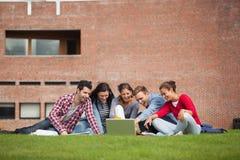 Cinque studenti casuali che si siedono sull'erba che indica al computer portatile Immagine Stock