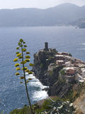 Cinque Terra, Vernazza,. Italy, Cinque Terra, Vernazza, waterfront village on cliff Royalty Free Stock Photos