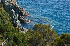 Cinque Terre, Λιγυρία, Ιταλία Ένας απότομος βράχος θάλασσας με τη βλάστηση στοκ εικόνες με δικαίωμα ελεύθερης χρήσης