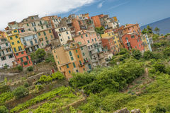 Cinque Terre, Италия Стоковые Фотографии RF