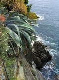 Cinque Terre Coast. Dramatic drop-off along the Cinque Terre coast in Italy stock photo