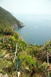 Cinque Terre coastal path Royalty Free Stock Images