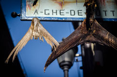 Cinque Terre Cuisine. Fishtails hanging in Corniglia in the Cinque Terre Royalty Free Stock Image